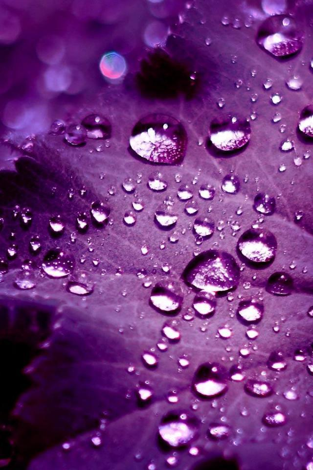 3D iPhone 5 Wallpapers with water Drop Effects (3)