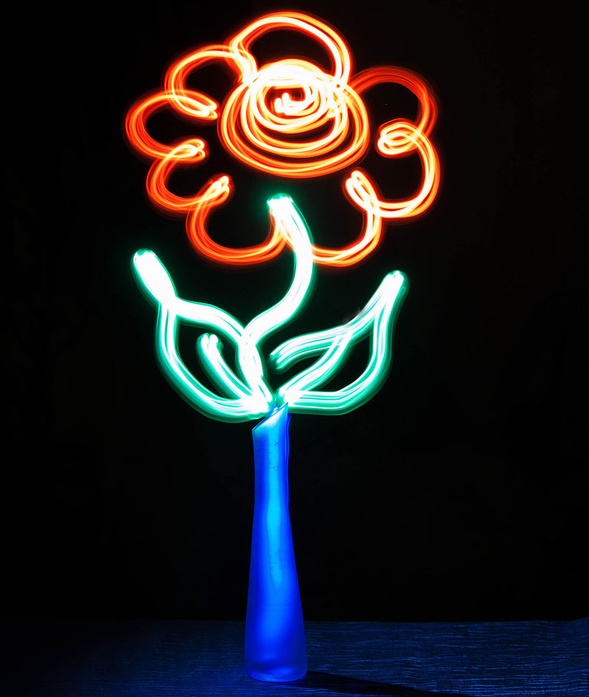 Flower - Light Painting Photography